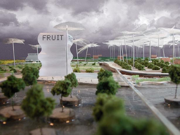 16 Fruitafdeling2web