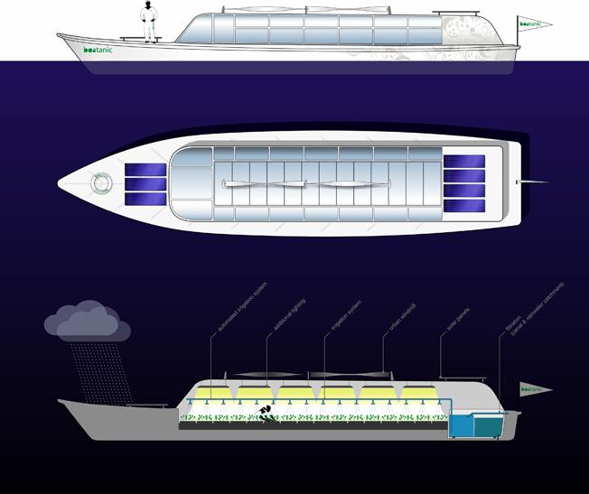 Boatanic_boat